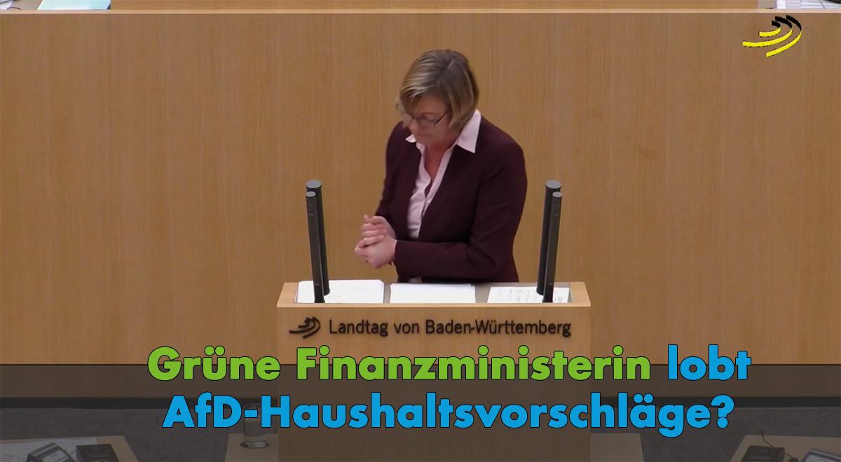 Finanzhaushalt 2018/2019: Grüne Finanzministerin lobt AfD-Vorschläge?