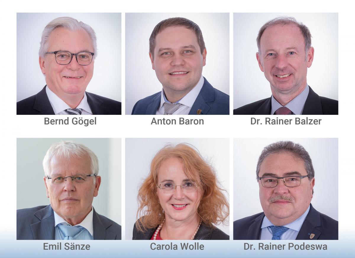 Fraktionsvorstand der AfD im Landtag von Baden-Württemberg