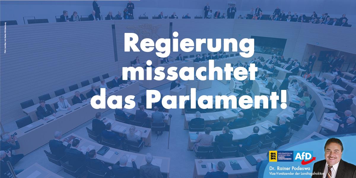 AfD-Fraktion: Regierung missachtet das Parlament!